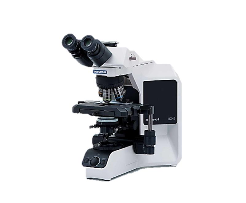 BX43 Trinocular